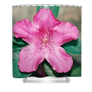My Azalea Shower Curtain