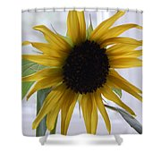 My Beautiful Sunflower Shower Curtain