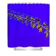 My Bougainvillea Aurea 10 Shower Curtain