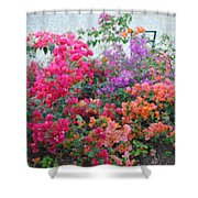 My Colorful Bouganville Shower Curtain