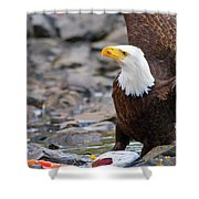My Dinner Shower Curtain by Mike  Dawson