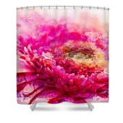 My Favourite Abstract Shower Curtain