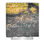 My First Manipulated Image Crowd Of Dandelions In Shadow Of Tree Branches Shower Curtain