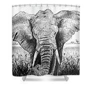 My Friend The Elephant II Shower Curtain