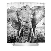 My Friend The Elephant II Shower Curtain