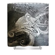 My Friend The Octopus Shower Curtain