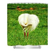 My Heart Baby Ostrich  Shower Curtain