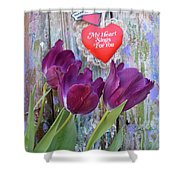My Heart Sings For You Shower Curtain
