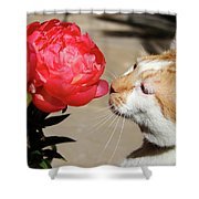 My Kitty In Love With A Peony Shower Curtain