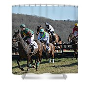 My Lady's Manor 17 Shower Curtain