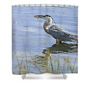 My Late Afternoon Treat Shower Curtain