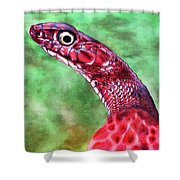 My Name Is Earl Shower Curtain