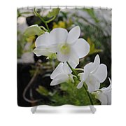 My Orchids # 10 Shower Curtain