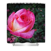 My Special Rose Shower Curtain