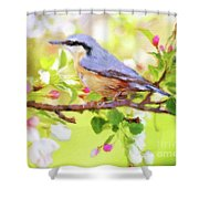 My Summer Bird Shower Curtain