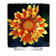 My Sunrise And You Shower Curtain