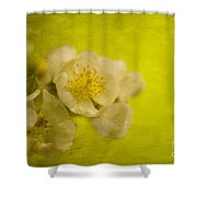 My Sweet Wild Rose Shower Curtain
