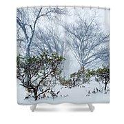My Winter Love Shower Curtain