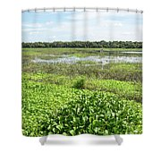 Myakka River And Marshes Shower Curtain
