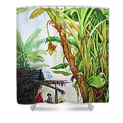 Myanmar Custom_01 Shower Curtain