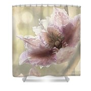 Mystere Shower Curtain
