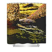Mysterious Barnacles Shower Curtain