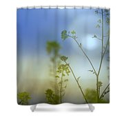 Mysterious Forest At Dusk Blue Shower Curtain