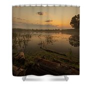 Mysterious Morning Time In Swamp Area. Landscape Shower Curtain