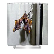 Mysterious Visitor Shower Curtain