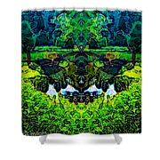 Mysterious Woods Shower Curtain
