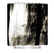 Mystery Ocean  Shower Curtain
