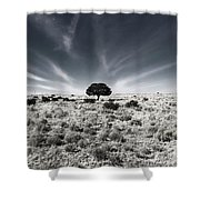 Mystery Ranch No. 18 Shower Curtain