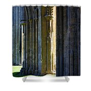 Mystic Avalon Shower Curtain