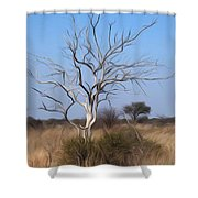 Mystic Buishveld Tree Shower Curtain