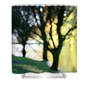 Mystic Fall Shower Curtain
