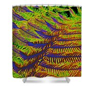 Mystic Fern Shower Curtain