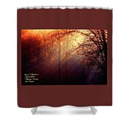 Mystic Forest At Dawn L A Shower Curtain