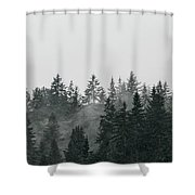 Mystic Forest II Shower Curtain
