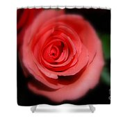 Mystic Pink Shower Curtain