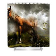 Mystic Visitor Shower Curtain