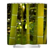 Mystical Bamboo Shower Curtain