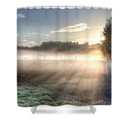 Mystical Fogs Of Florida Shower Curtain