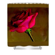 Mystical Rose Shower Curtain