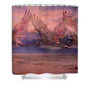 Mystical Trio Shower Curtain