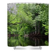 Mystical Withlacoochee River Shower Curtain