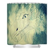 Mythical Dragon Shower Curtain
