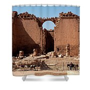 Nabatean's Ruins Shower Curtain