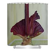 Voodoo Lily 1a Shower Curtain