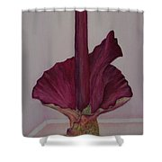 Voodoo Lily 2a Shower Curtain