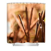 Nails On Dragon Shower Curtain